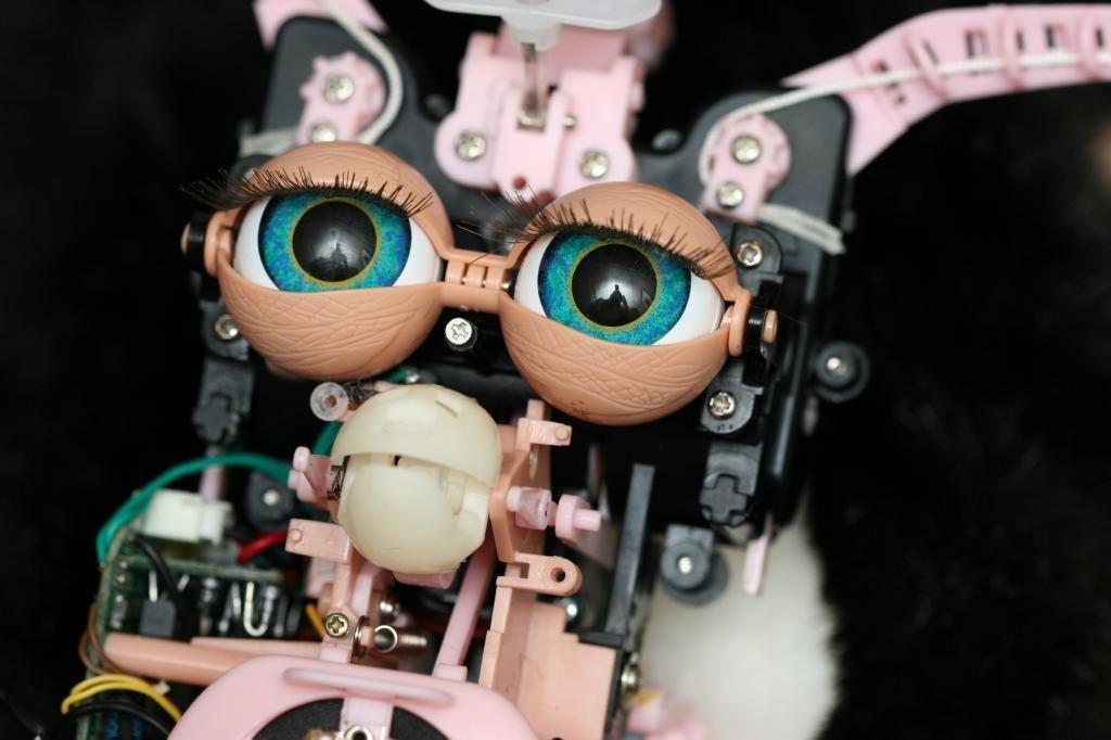 Barebones-Furby-eecue_24150_hxbv_l